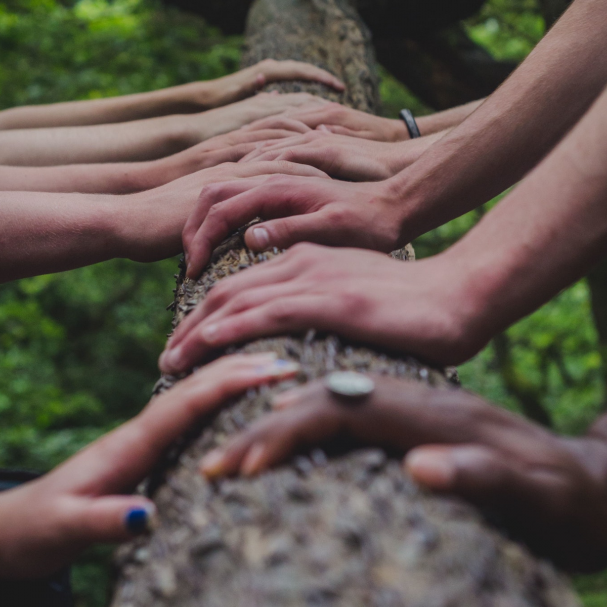 Don't go it alone – cooperation & supporting eachother.